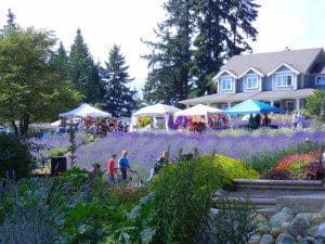 Damali Winery Pacific Northwest getaways