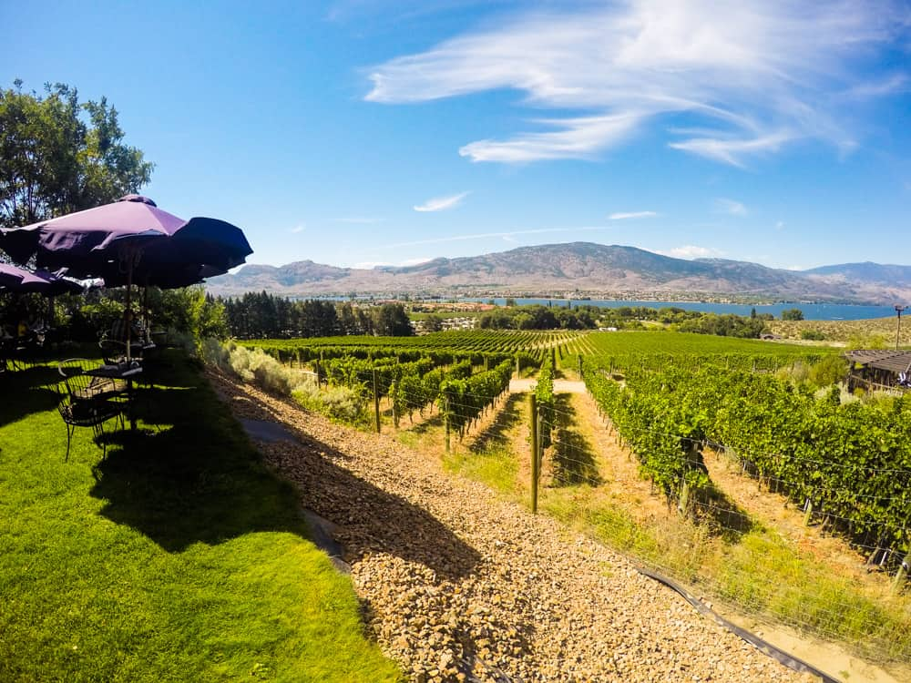 Wine Tasting in the Okanagan Valley