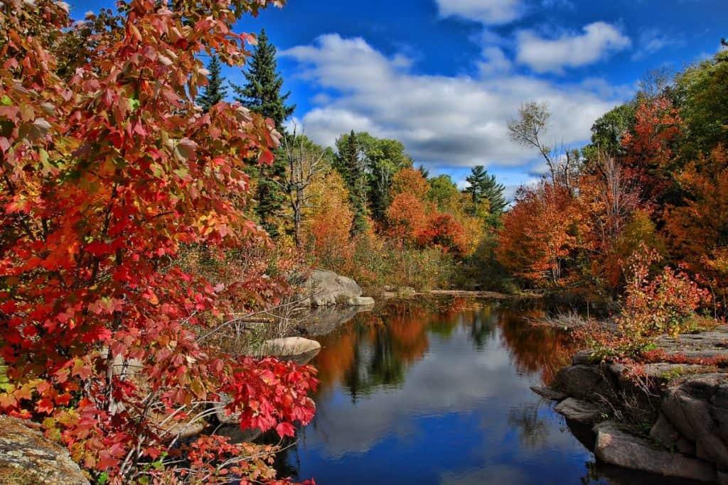 Fall in Washington State