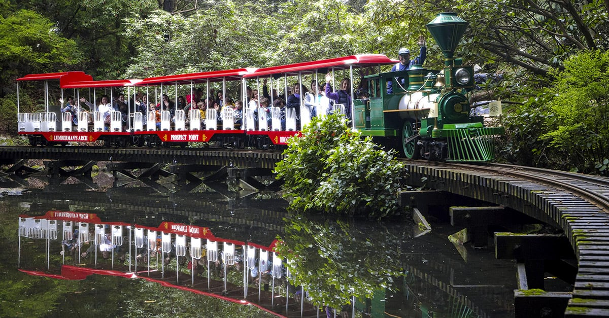 Small train holding passengers and riding through the trees in Stanley park