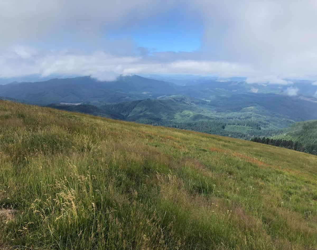 Mary's Peak Oregon