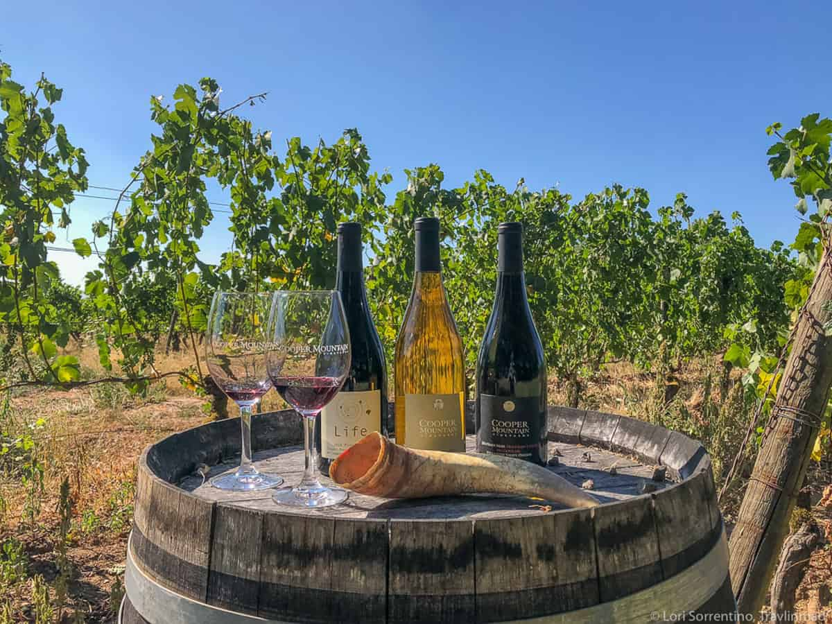 Wine bottles and wine glasses sitting on a barrel in frond of grape vines